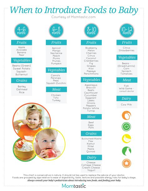 when can babies start table food introducing solids a month by month schedule free printable