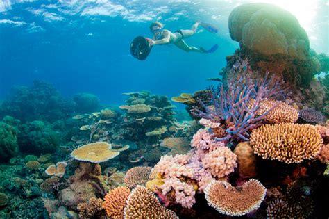 holiday trip  thailand grab  cheap travel deals
