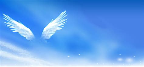 wings background now wings white blue sky background blue sky
