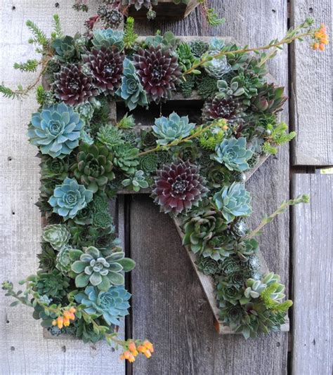 Succulent Letter Planter by 7 Succulent Gardens You Can Create Blissfully Domestic