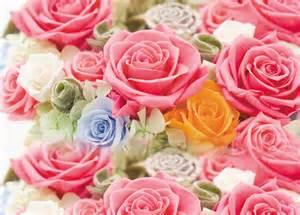 preserving flowers preserved flowers florever
