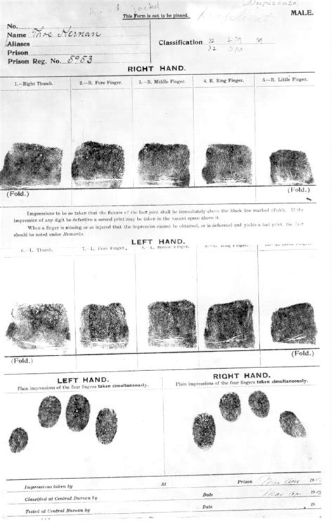 Criminal Record Ny The Fingerprint Experiment Ny Dcjs