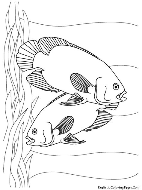 free coloring pages of aquarium
