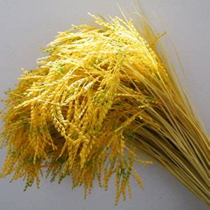 New Kalung Bunga Flower Etnik Kuning Yellow Pesta Fashion beras bunga beli murah beras bunga lots from china beras