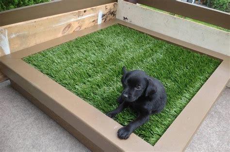 pet zen garden premium synthetic grass bestfakegrassescom