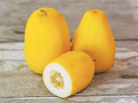 golden sweet melon baker creek heirloom seeds
