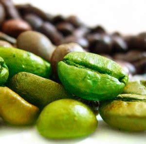 alimenti con acido clorogenico l acido clorogenico fa dimagrire dietando