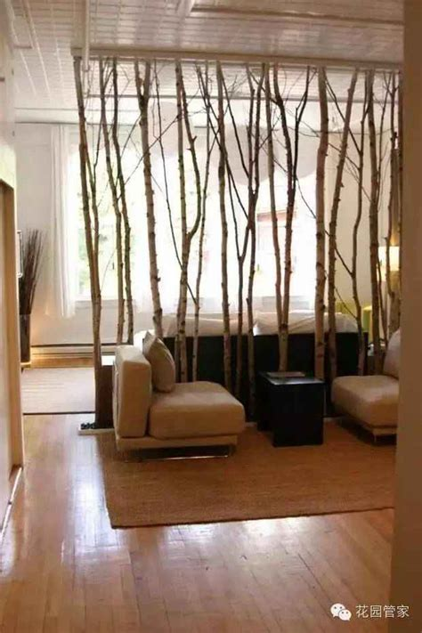 Bamboo Room Divider Charming Bamboo Room Dividers That Will Amaze You
