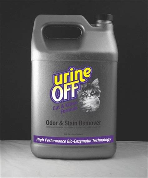 cleaning urine from upholstery removing cat urine smell from hardwood floors smell from