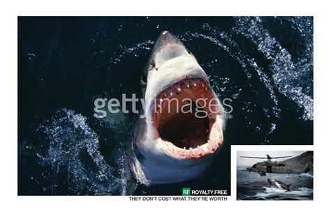 imagenes gratis getty images getty images pondr 225 de forma gratuita millones de fotos