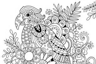 summer coloring pages for adults coloring page summer parrot 6