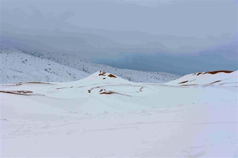 sahara snowfall photos freak of nature sahara desert hit by biggest