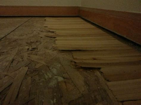 Leveling A Floor With Shims how to level a sloping sub floor with shims home