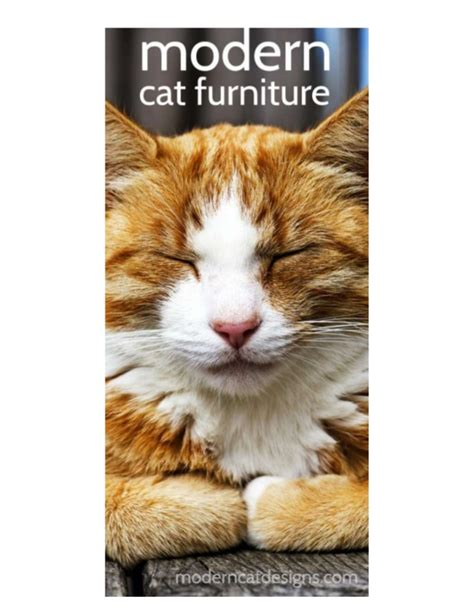 modern cat modern cat furniture