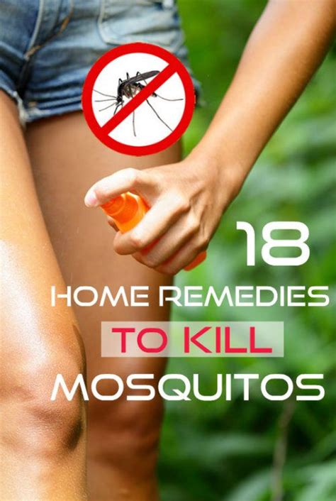 how to get a mosquito out of your room 18 ways to keep mosquitoes away check it out mosquitoes home and