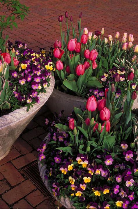 Top 14 Outdoor Spring Flower Decor Ideas Home Garden Diy Diy Flower Garden
