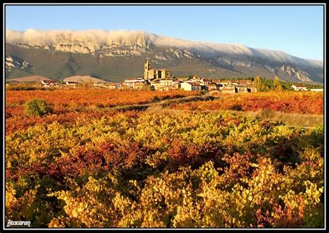 imagenes otoño ciudad fotos de cenicero fotos de cenicero fotos de pueblos