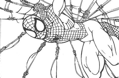 imagenes para pintar spiderman dibujos para colorear de spiderman capturando villanos