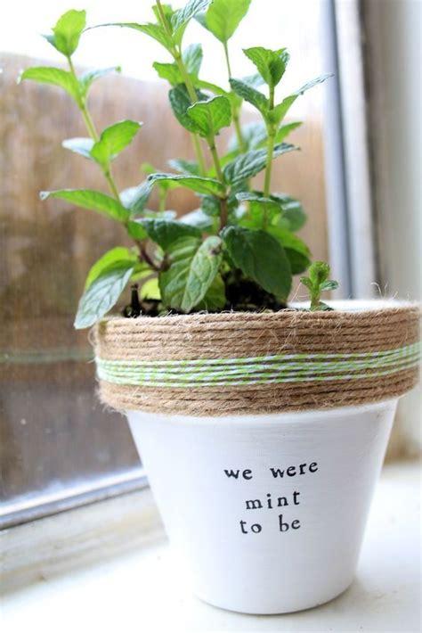 plant puns diy   mint   funny create