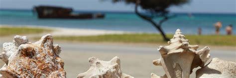 appartments in aruba aruba apartments sunset beach studios intimate resort