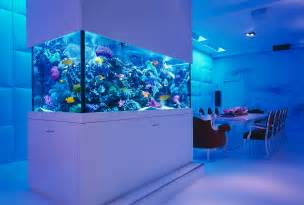 aquarium designs 25 awesome aquariums you wish you owned