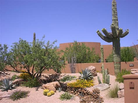 outdoor gardening mounding desert landscaping designs