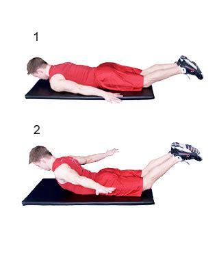 T Bar Row Bench Prone Cobra Fitness Oefeningen Com