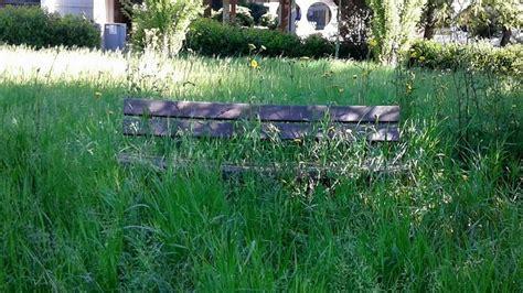 panchine parco erba alta nei parchi in attesa degli sfalci panchine e