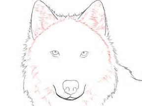 How To Draw A Wolf That Is Easy Easy Wolf Drawing Clipart Best