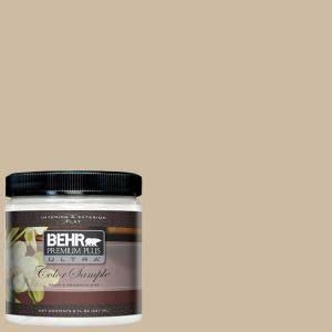 8 oz 710c 3 gobi desert interior exterior paint sle