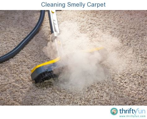smelly rug cleaning smelly carpet thriftyfun