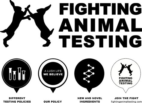 Hair Stylist Career Pros And Cons by Against Animal Testing