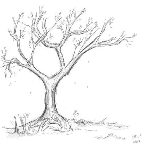 sketched tree that s photoshopped