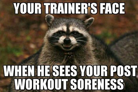 Meme Caption Maker - 4328 best cesaro energy images on pinterest fitness