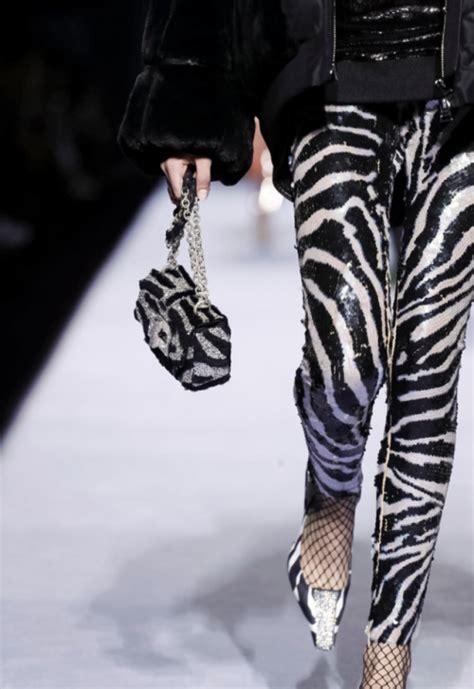 tumblr zebra themes zebra print tumblr