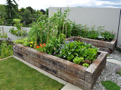 Elevated Vegetable Garden Small Vegetable Garden Design