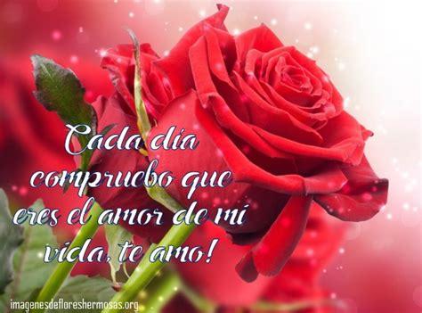 imagenes te amo con una rosa im 225 genes de rosas con frases de te amo para dedicar
