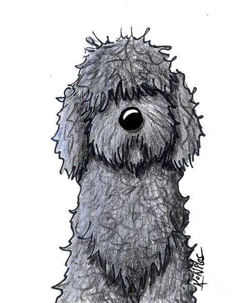 goldendoodle drawing black doodle drawing by niles