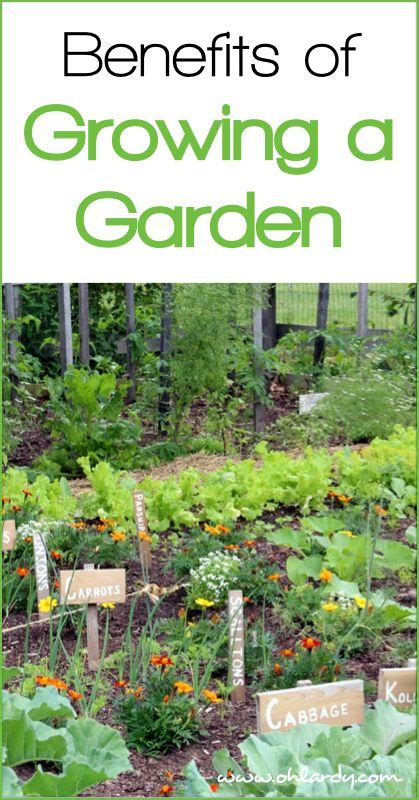 10 Benefits Of Growing A Garden Www Ohlardy Com Benefits Of Vegetable Gardening