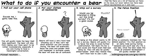 grey shirts what to do if you encounter a bear the record