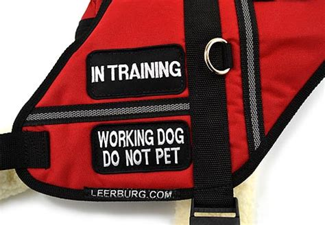 do not pet vest leerburg working vest