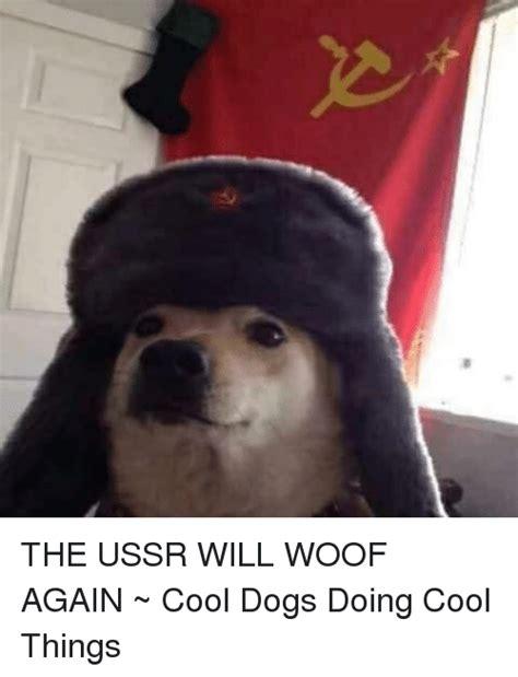 Cool Dog Meme - 154 funny ussr memes of 2016 on sizzle marxist