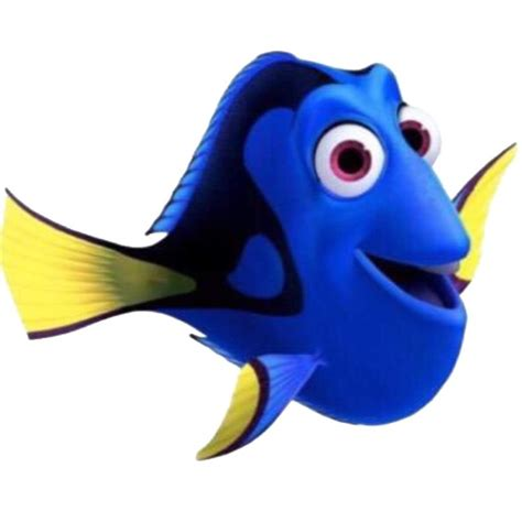 Finding Nemoor Who I Call Myself Today by Finding Nemo Vs Finding Dory Amino