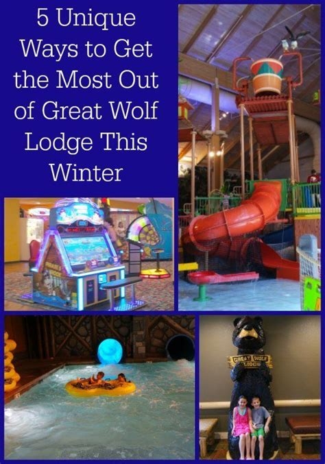 10 best ideas about great wolf lodge on wolf