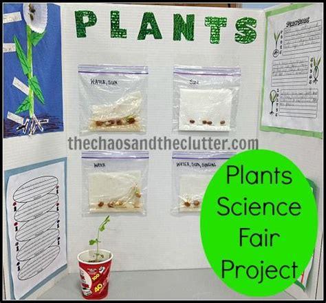 Plants Science Fair Project Kids And Plants Plant