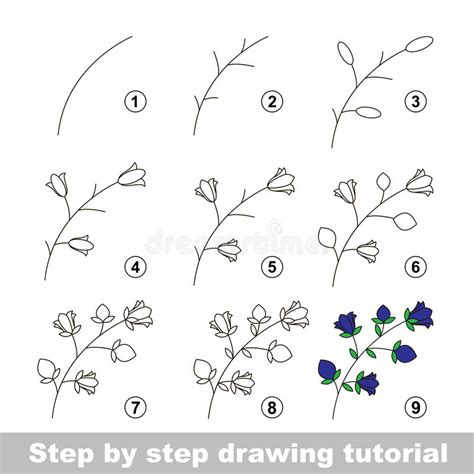 sketch to vector tutorial drawing tutorial how to draw a bluebell stock vector