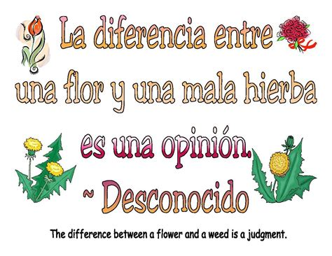 biography definition in spanish spanish quotes about life quotesgram