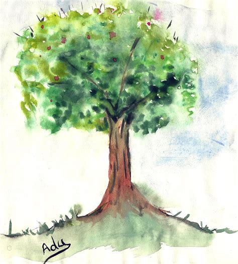 water color tree trees watercolor related keywords suggestions trees
