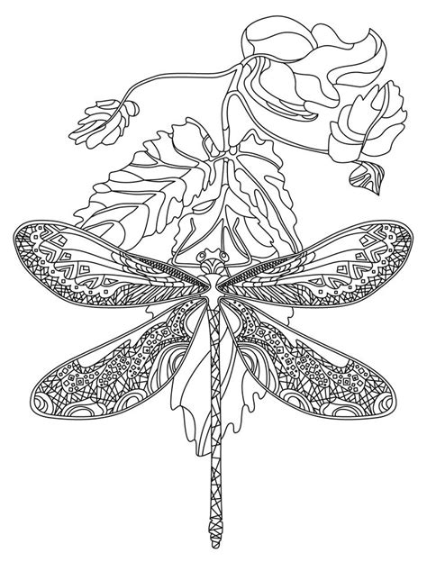 dragonfly mandala coloring pages 779 best animal coloring pages for adults images on