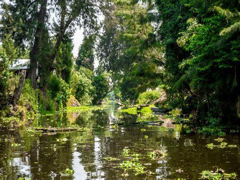 imagenes de paisajes de xochimilco xochimilco est 225 en peligro y tu puedes ayudar a evitar su
